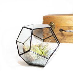Terrarium / Large Geometric Terrarium / Glass Air Plant Succulent Holder / Dodecahedron