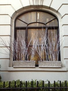 Winter's chill and a lack of yardage don't need to deter you from bedecking your windows with eye-catching arrangements like these