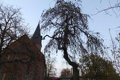 unsere Kirche Kirchen, Resin