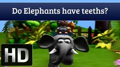Do Elephants Have Teeth? | Facts About Animals | Tell Me Why