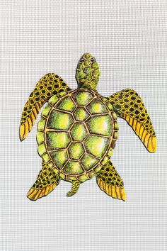 Did you know that out of the seven known species of sea turtles, an alarming six of those species are critically endangered! #windowfilmworld #windowfilm #screendoorsavermagnet #homedecor Film World, Screen Material, Crocodiles, Sea Turtles, Mammals, Print Design, Magnets, Old Things, Creatures