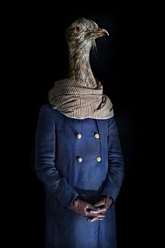 Top 10 Animals Dressed as Human Beings | UNIQUE