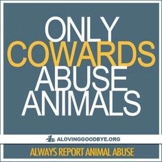 And abusing animals means eating them and taking the milk from them. Oh, you thought it was just the ones who kicked little puppies or killed cats? No, cowards eat animals and animal products. THAT IS ABUSE!