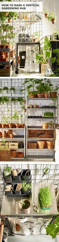 Get up and growing with a vertical gardening hub! You can create your own green oasis even in the smallest apartment or the busiest urban space.  Garden sheds, potting sheds, beautiful garden sheds, pretty potting sheds, garden shed plans, garden shed ideas, garden shed inspiration. #gardenshed #shed #pottingshed