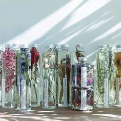 四季、花を眺め続けるハーバリウム