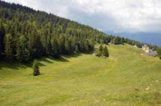 The Alps of Vallagarina