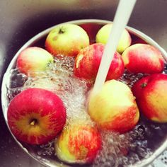 Spent some time in the garden picking the ripe apples off the tree this afternoon  Washing in ice cold water on its way to being stewed in cinnamon and sugar and into a fruit crumble  #apple #apples #homegrown #applepie #applecrumble #gardening #homecooking #homelife #homesweethome #fruit #dessert #pudding #crisp #orchard #september #freshfruit #appledoesntfallfarfromthetree