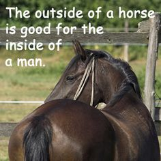 e299d1c2f72 39 Best Horse or Western Quotes or Sayings images
