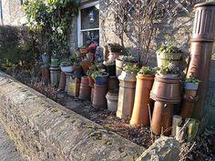 File:Chimney pots as planters - geograph.org.uk - 1098627.jpg
