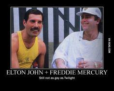 Not even close! Freddie Mercury Quotes, Queen Freddie Mercury, Dorothy Parker, Brian May, Friedrich Nietzsche, Pop Rocks, Glam Rock, Queen Songs, Queen Meme