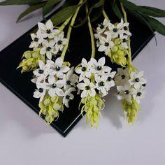 52 aprecieri, 4 comentarii - Marianne (@marianneweddingdesign) pe Instagram My Flower, Flowers, Floral Wreath, Crown, Wreaths, Instagram, Jewelry, Home Decor, Floral Crown