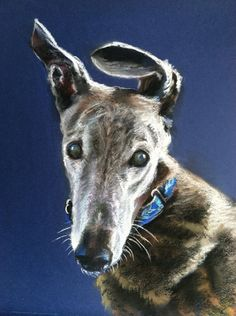 Custom dog paintings by Kathy Keller Bauer