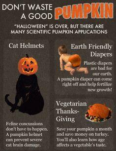 Don't Waste A Good Pumpkin
