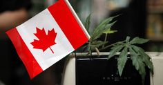 This new bill would legalize weed in Canada