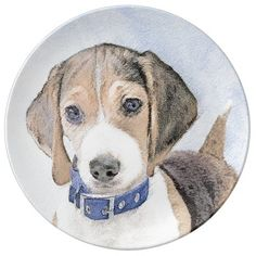 Beagle Painting - Cute Original Dog Art Dinner Plate  beagle mix dogs, diy puppy, puppy day #puppy #jackrussell #sleepingbeauty, back to school, aesthetic wallpaper, y2k fashion Corgi Beagle, Rottweiler Puppies, Beagle Puppy, Cute Puppies, Dogs And Puppies, Original Art, Original Paintings, Puppy Day, Ceramic Knobs
