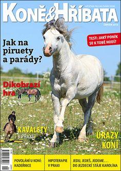 Červen 2016 Equestrian, Magazines, Horses, Animals, Journals, Animales, Animaux, Horseback Riding, Horse