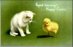 Free Printable Easter Greeting Cards: Vintage Cats and Kittens - Vintage Holiday Crafts Vintage Cat, Vintage Easter, Vintage Holiday, Easter Cats, Easter Chick, Happy Easter Wishes, Web Design, Easter Greeting Cards, Easter Parade
