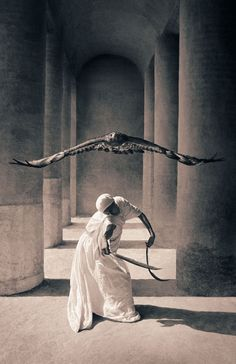 """The Double-Edged Falconer."" (By: Gregory Colbert.)"