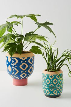 Refresh your backyard or patio with outdoor furniture and garden accessories from Anthropologie. Isle Of Man, Strawberry Planters, Hanging Pots, Art Graphique, Garden Accessories, Highlands, Earthenware, Clay Art, Graphic