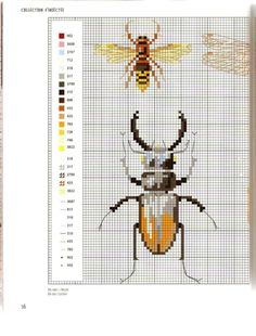 Gallery.ru / Photo # 14 - MARABOUT Insects - tatasha  Cross stitch scientific diagrams insects labelled victorian insect collection