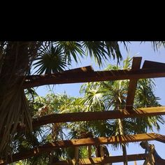 Hartwood's Restaurant rooftop at Tulum when under construction.