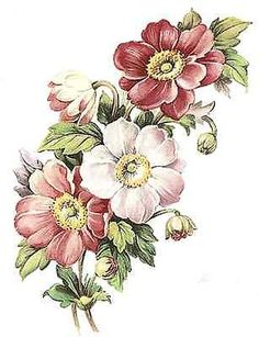 Flores Cor De Rosa Henley select-a-size Waterslide decalques cerâmicos Bx