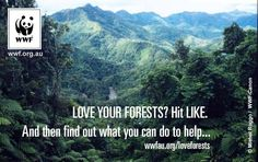 Love your forests? Hit LIKE! #WWF