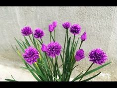 ABC TV | How To Make Chives Paper Flowers From Crepe Paper - Craft Tutorial - YouTube