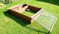 outdoor guinea pig run - Google Search