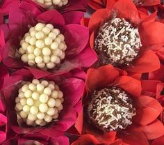 Brigadeiro Gourmet feito com chocolate belga Chocolate Belga, Photo And Video, Instagram