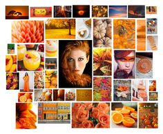 """""""Orange Autumn"""" by disney-dreams-do-come-true ❤ liked on Polyvore featuring Ring of Fire, Therapy, Camper and FRUIT"""
