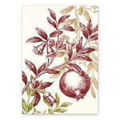 Pomegranate branch/tree