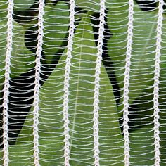 Anti-Hail Netting, wide (sold per lineal foot) - Shade Cloth Hydroponic Supplies, Greenhouse Supplies, Growing Plants Indoors, Grow Lights For Plants, Backyard Greenhouse, Greenhouse Plans, Garden Inspiration, Garden Ideas, Backyard Ideas