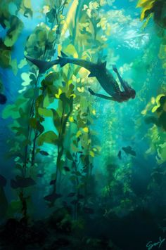 Color study from a photo Environment Concept, Environment Design, Fantasy Art Landscapes, Landscape Art, Mermaid Art, Shark Mermaid, Environmental Art, Pretty Art, Animes Wallpapers
