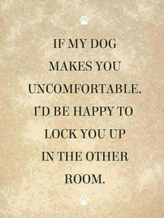 It's National Pet Day, so what better way to celebrate how much you love your dog and adore your cat than to share these funny pet memes and relatable quotes about pets. Mans Best Friend, Best Friends, Funny Friends, Dog Friends, Jiff Pom, Diy Pet, Pet Sitter, Dogs Of The World, Animal Quotes