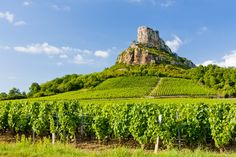 of France's France has plenty of great wines but which one is your favourite? Discover our suggestions here, and enter our competition to try to a wonderful wine tour with Houlala to Burgundy! Cool Places To Visit, Places To Go, Site Classé, Burgundy France, Burgundy Wine, Auxerre, In Vino Veritas, Pinot Noir, Ultimate Travel