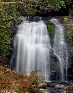 "Meigs Falls is one of the few waterfalls in the Smokies that you can see from your car. Look for the waterfall along Little River Road, approximately 13 miles west of Sugarlands Visitor Center, or 5 miles east of the Townsend ""Wye."" Rosebay rhododendron is blooming along Little River Road now(6/14), so it's an especially picturesque time to drive this road.  There is a pull off to view this beauty."
