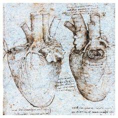 DaVinci, 1513