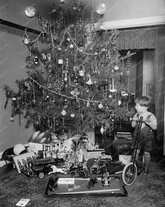 Christmas Tree, Boy With Scooter 1920s 8x10 Reprint Of Old Photo