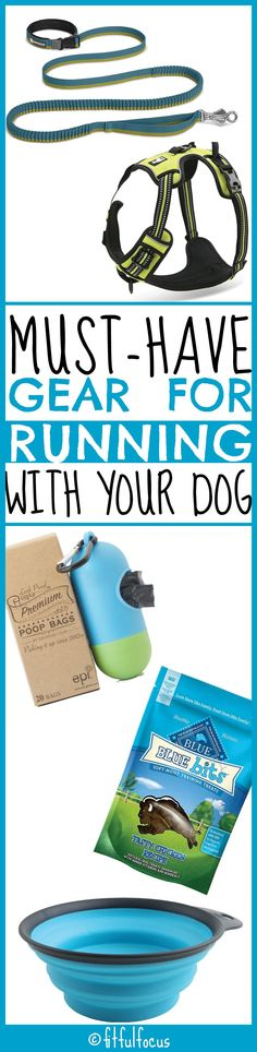 Must-Have Gear For Running With Your Dog | Fit & Fashionable Friday | Dog Fashion | Dog Tools | Running Tips & Tricks