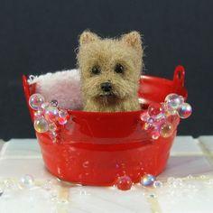 Yorkshire Terrier - Needle Felted Yorkie Dog Sculpture in Bathtub