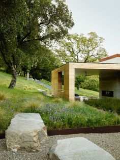 A verdant meadow dotted with grasses makes a lush, living groundcover for this modern home in California. Landscape Architect Visit: Gardenista