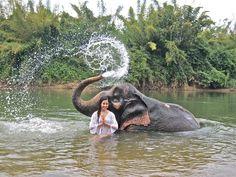 water. elephant. girl