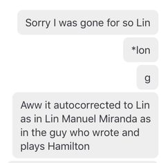 Me casually advertising Hamilton to my friends