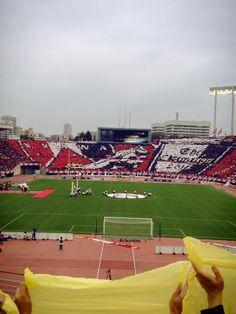 柏レイソルゴール裏から見た浦和レッズのコレオ Urawa Reds, Baseball Field, Life, About Football, Hs Sports, Pictures
