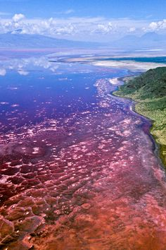 Lake Natron in Tanzania is known for its deep red hue. The lake is part of the East African Rift Valley, and gets its color from the algae that live on salt in the water from nearby volcanoes.