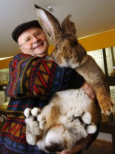 Just a man and his giant rabbit.