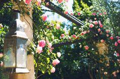 Antica Fattoria di Paterno Weddings in Tuscany - Chianti www.fattoriapaterno.it