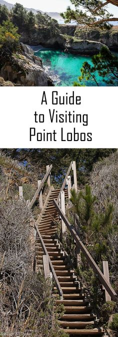 A guide to visiting Point Lobos California Carmel Beach California, Monterey California, California Vacation, California California, Central California, Central Oregon, Central Coast, California Destinations, Us Destinations