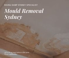 Rising Damp, Free Quotes, Sydney, How To Remove, Advice, Tips